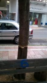 Τα έβαλαν με τα δέντρα και τα φυτά (1)